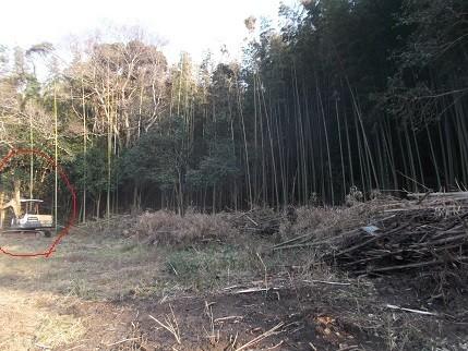 f:id:fujiwarakominka:20210114154958j:plain