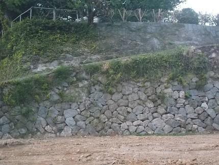 f:id:fujiwarakominka:20210419184916j:plain