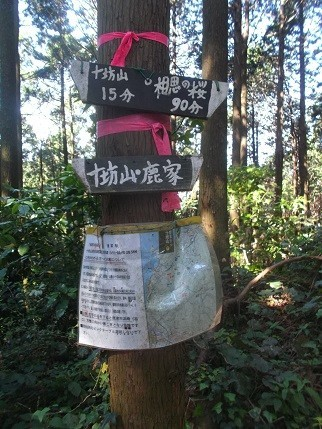 f:id:fujiwarakominka:20210503092610j:plain