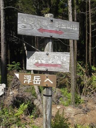 f:id:fujiwarakominka:20210505140207j:plain