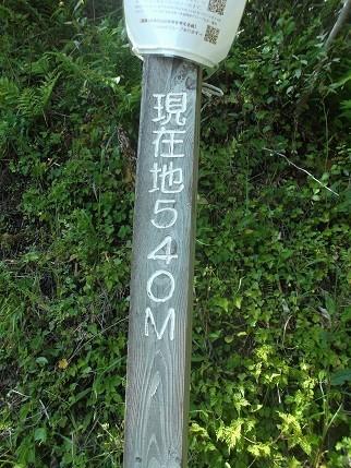 f:id:fujiwarakominka:20210505143531j:plain
