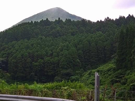 f:id:fujiwarakominka:20210802070034j:plain