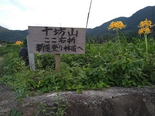 f:id:fujiwarakominka:20210915070046j:plain