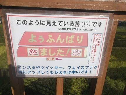 f:id:fujiwarakominka:20210919083900j:plain