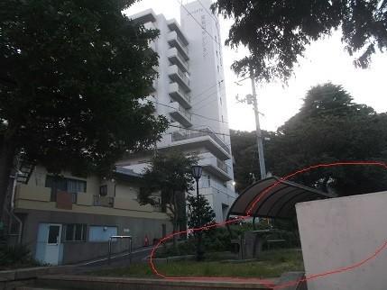 f:id:fujiwarakominka:20210919180427j:plain