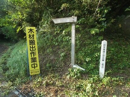f:id:fujiwarakominka:20211010161041j:plain