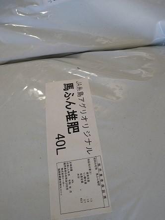 f:id:fujiwarakominka:20211023080953j:plain
