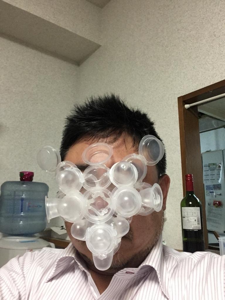 f:id:fujiwaramasaya100:20171208171634j:plain