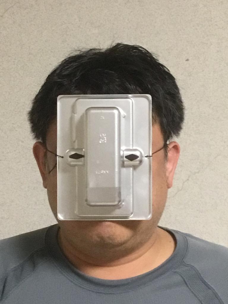 f:id:fujiwaramasaya100:20180416220308j:plain