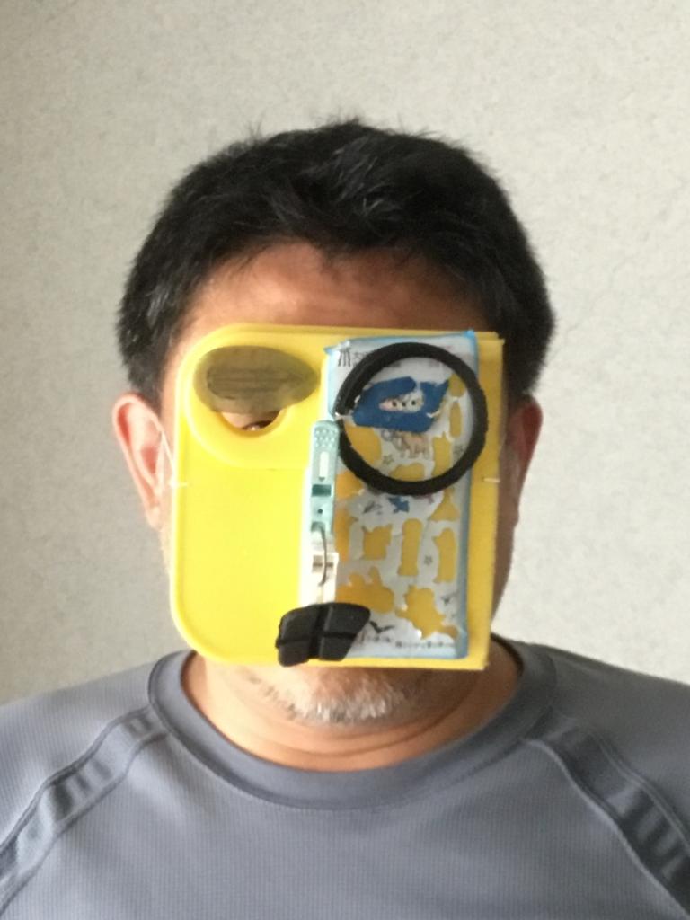 f:id:fujiwaramasaya100:20180814100317j:plain