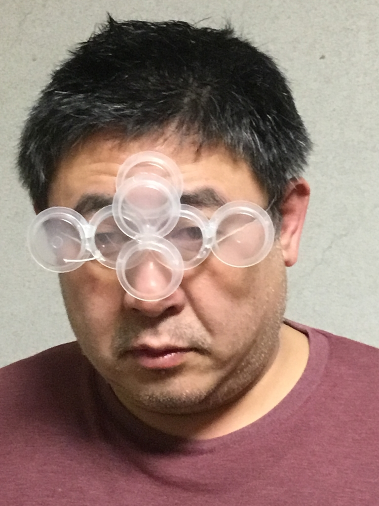 f:id:fujiwaramasaya100:20190118111915j:plain