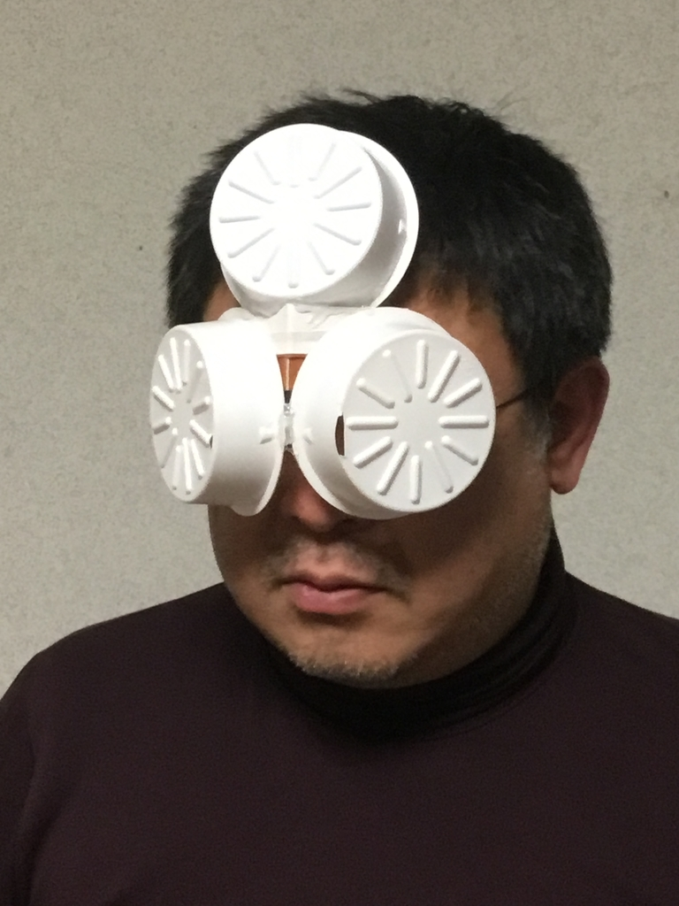 f:id:fujiwaramasaya100:20190131212306j:plain