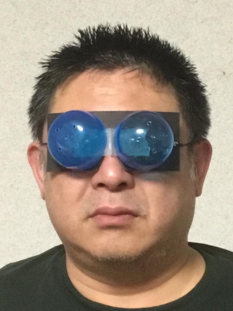f:id:fujiwaramasaya100:20190302172011j:plain