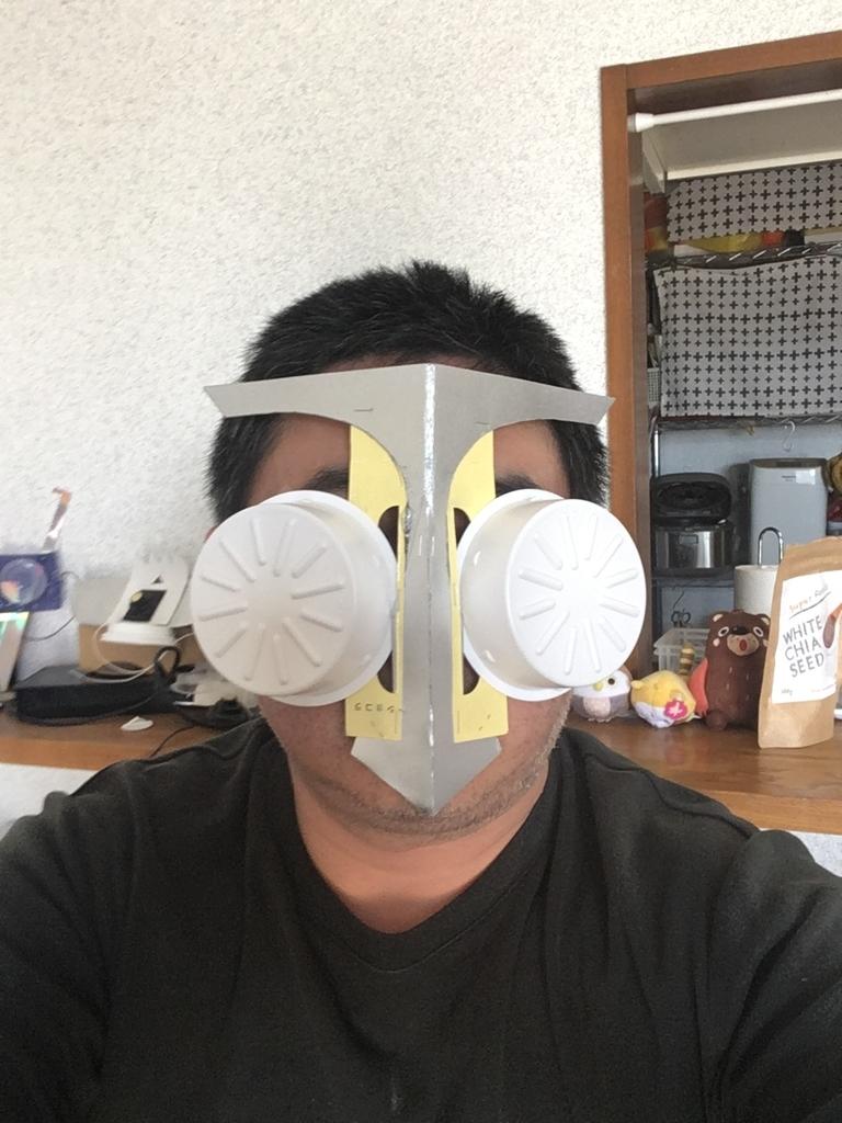 f:id:fujiwaramasaya100:20190313105212j:plain