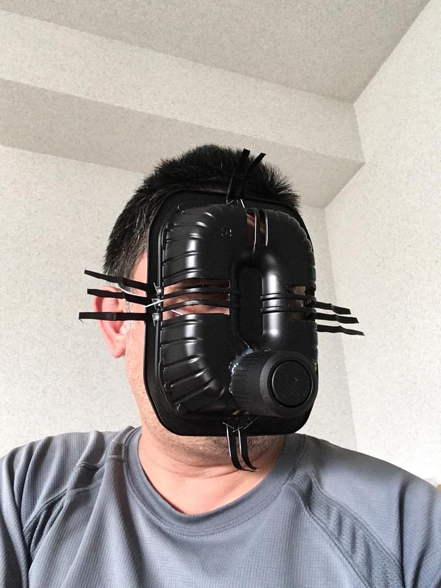 f:id:fujiwaramasaya100:20190906071347j:plain