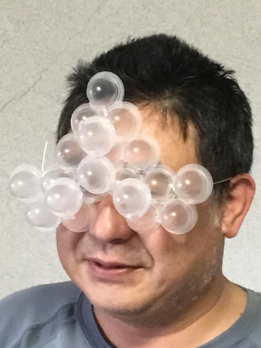 f:id:fujiwaramasaya100:20190918102943j:plain