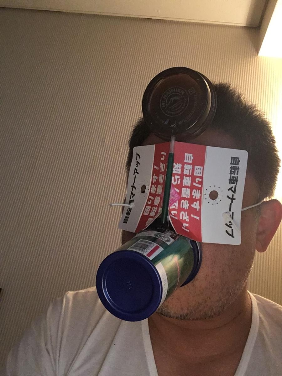 f:id:fujiwaramasaya100:20191122075021j:plain