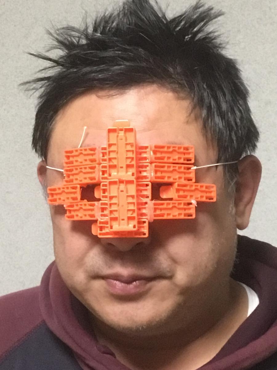 f:id:fujiwaramasaya100:20200106202818j:plain