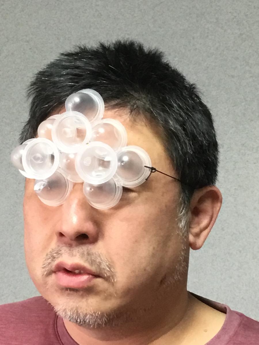 f:id:fujiwaramasaya100:20200303071434j:plain
