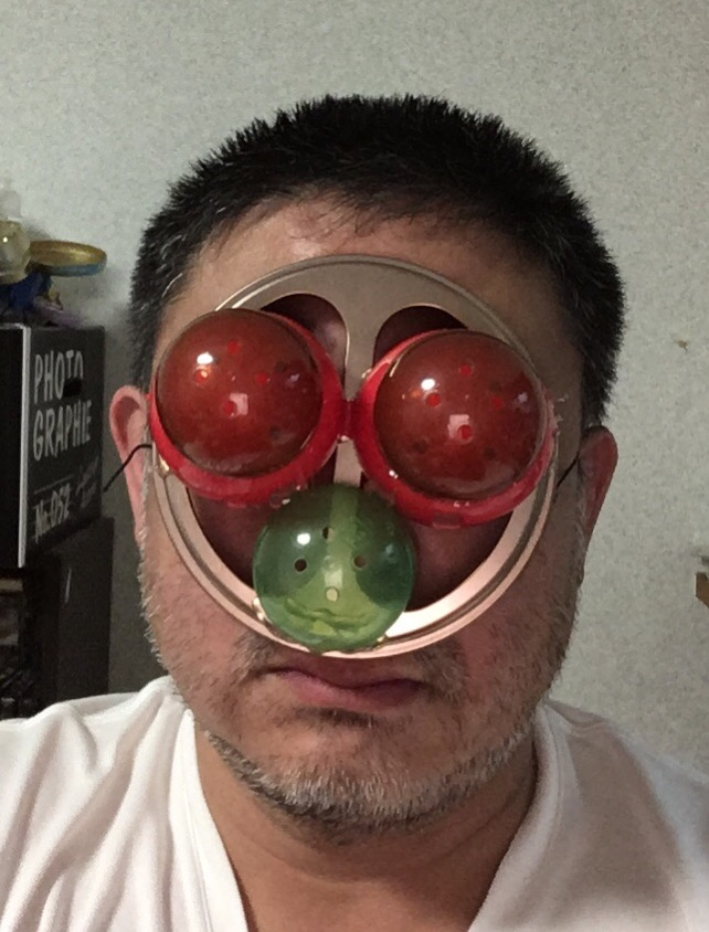 f:id:fujiwaramasaya100:20200621231909j:plain