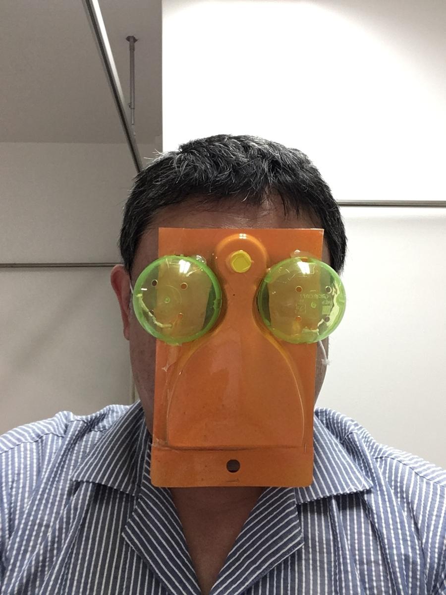 f:id:fujiwaramasaya100:20210508071017j:plain