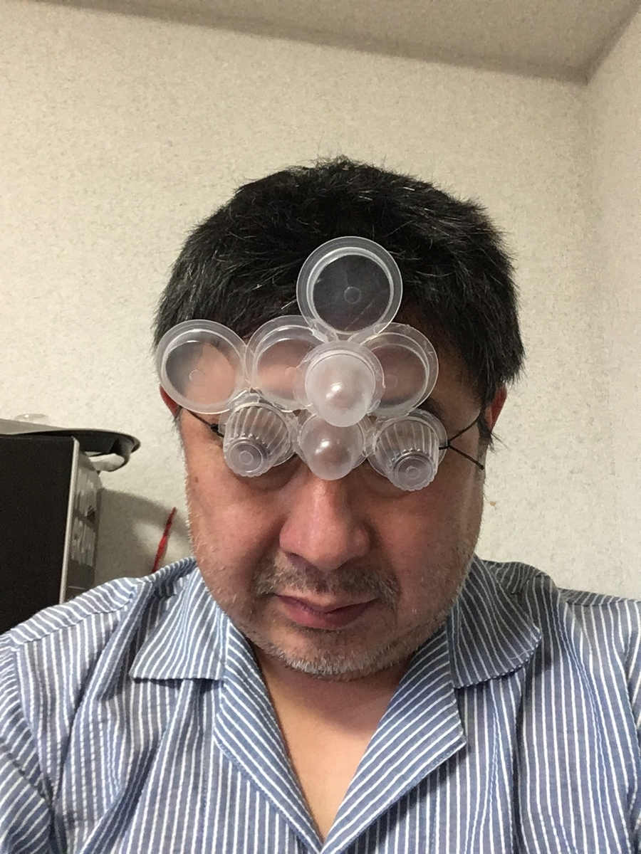 f:id:fujiwaramasaya100:20210513063751j:plain
