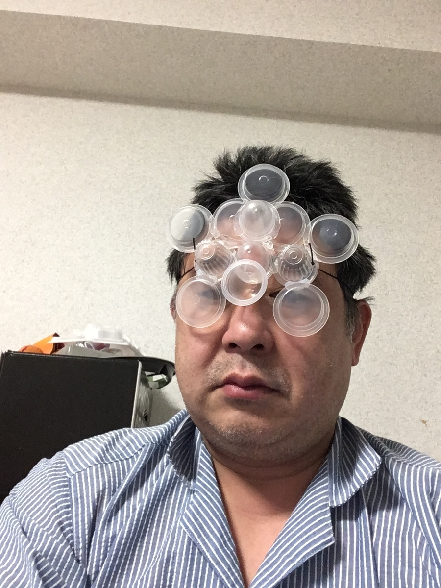 f:id:fujiwaramasaya100:20210519064315j:plain