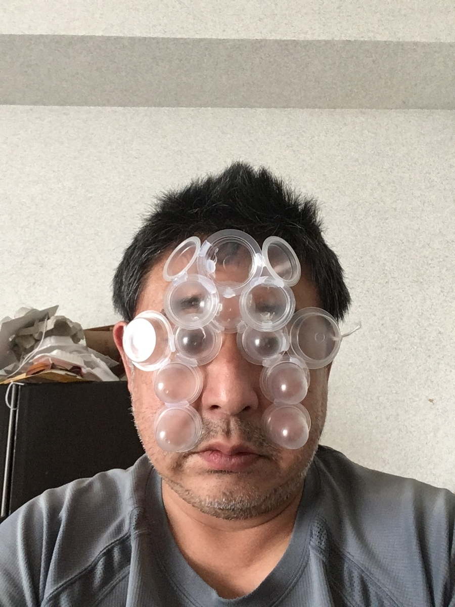 f:id:fujiwaramasaya100:20210731072906j:plain