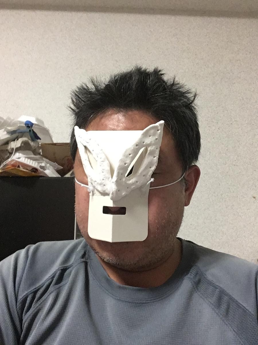f:id:fujiwaramasaya100:20210808194438j:plain