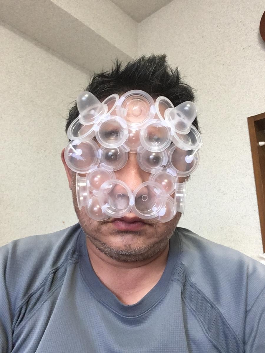 f:id:fujiwaramasaya100:20210809082244j:plain