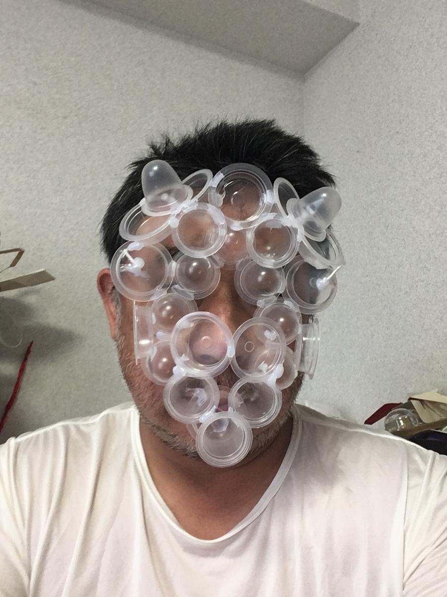 f:id:fujiwaramasaya100:20210813101615j:plain