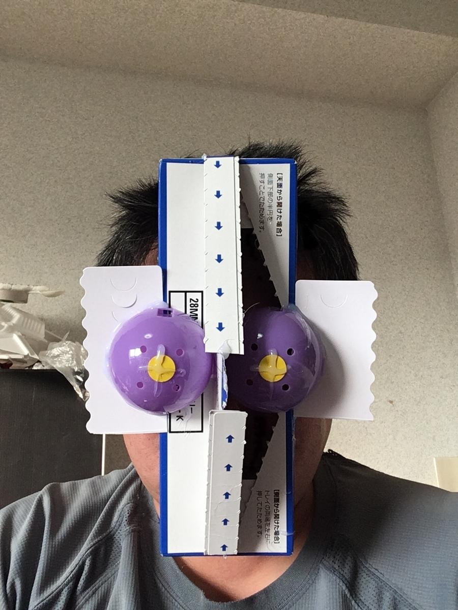 f:id:fujiwaramasaya100:20211008071005j:plain