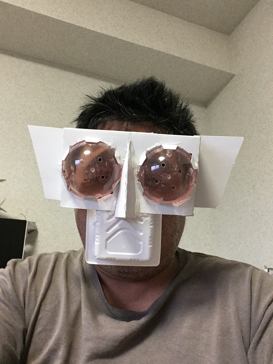 f:id:fujiwaramasaya100:20211012070456j:plain