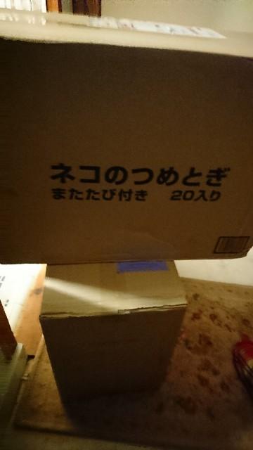 f:id:fujiyo311:20210228165328j:image