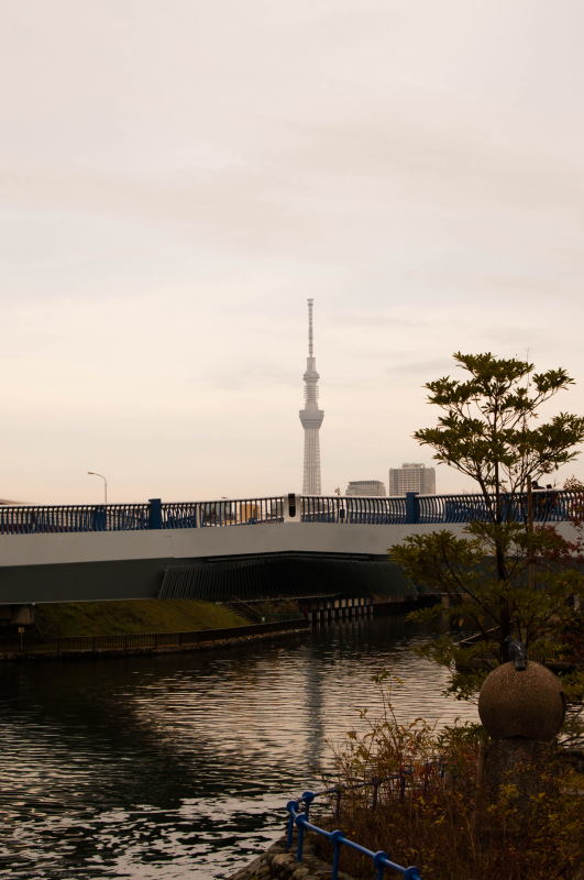 f:id:fukagawa1953:20161121104200j:plain