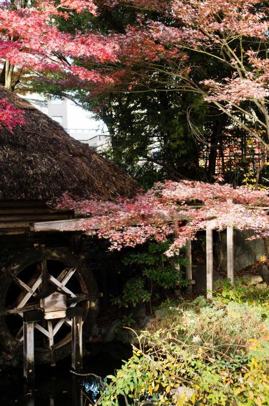 f:id:fukagawa1953:20161125092339j:plain
