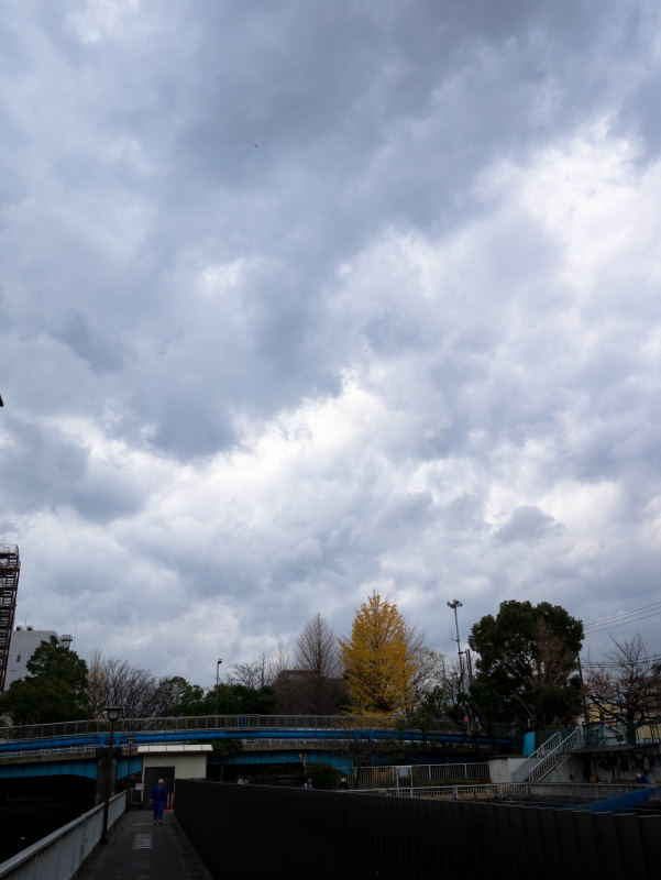 f:id:fukagawa1953:20161222170317j:plain