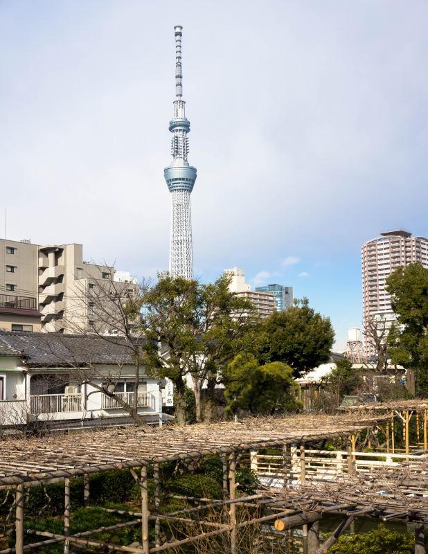 f:id:fukagawa1953:20170114172030j:plain