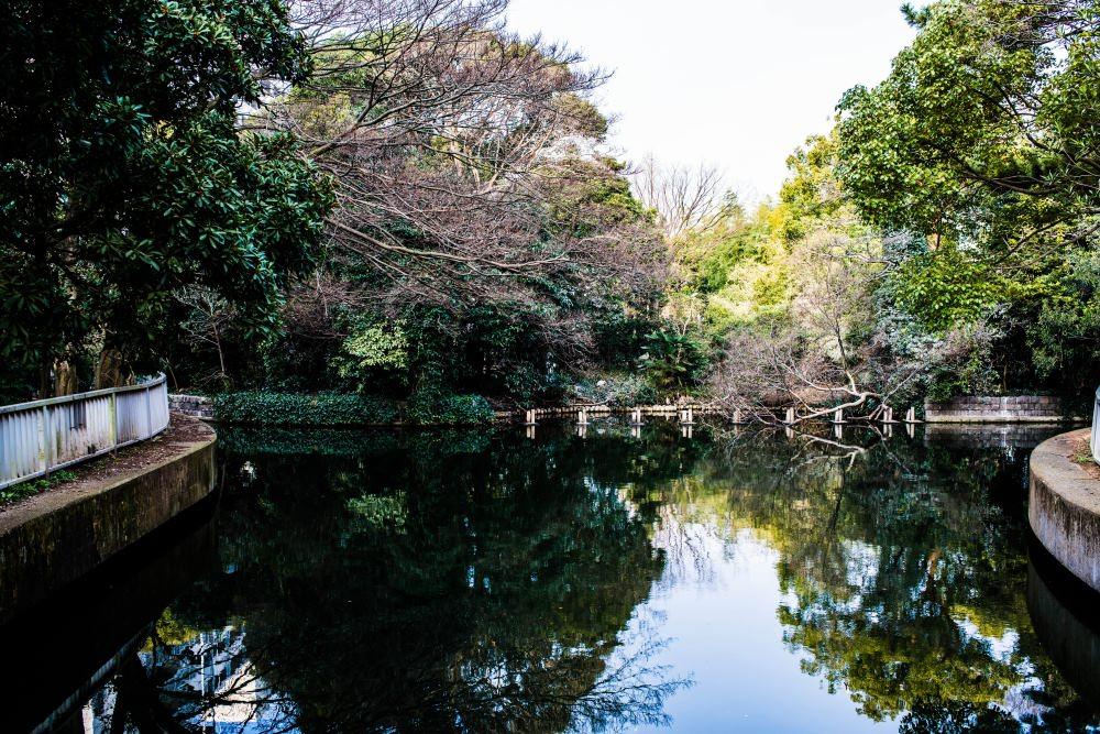 f:id:fukagawa1953:20170306082401j:plain