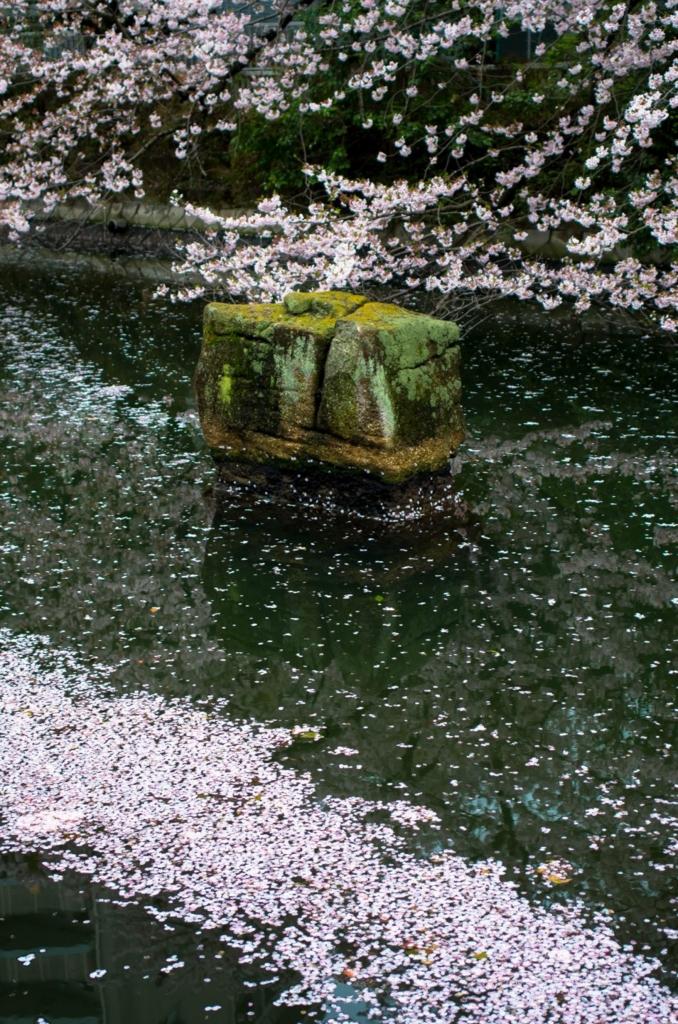 f:id:fukagawa1953:20170410132648j:plain