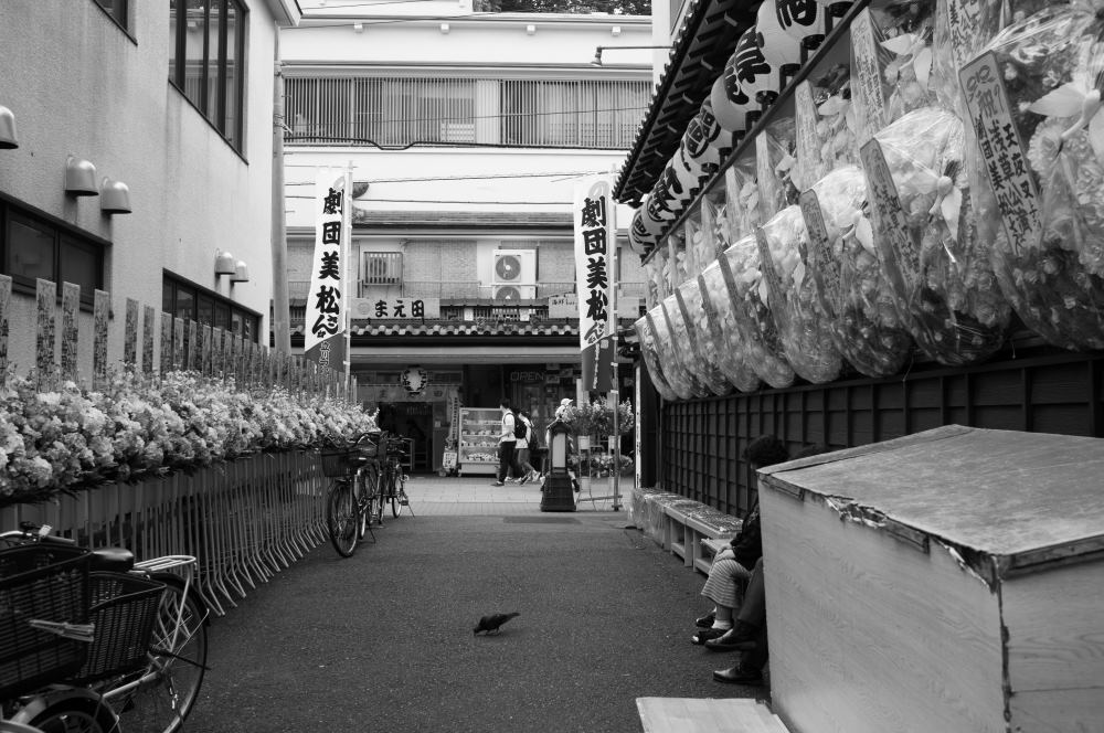 f:id:fukagawa1953:20170608220340j:plain