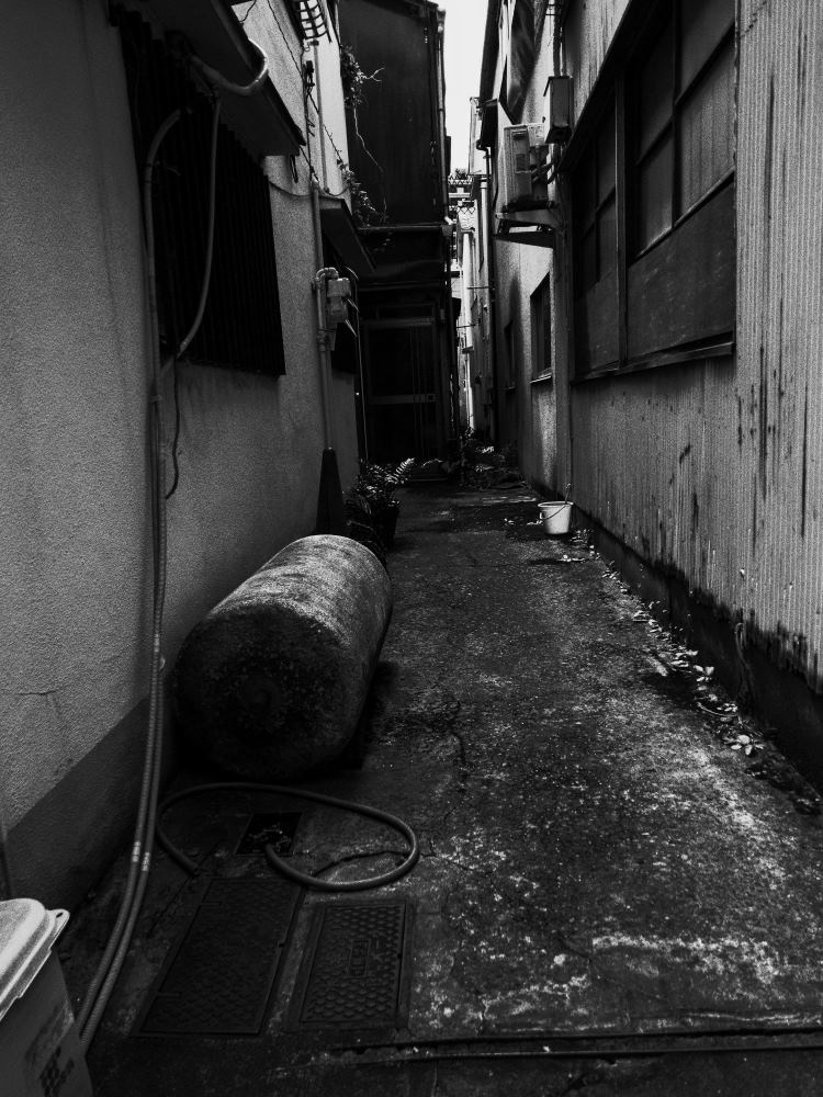 f:id:fukagawa1953:20170901133920j:plain