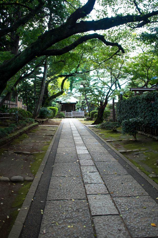 f:id:fukagawa1953:20171016203539j:plain