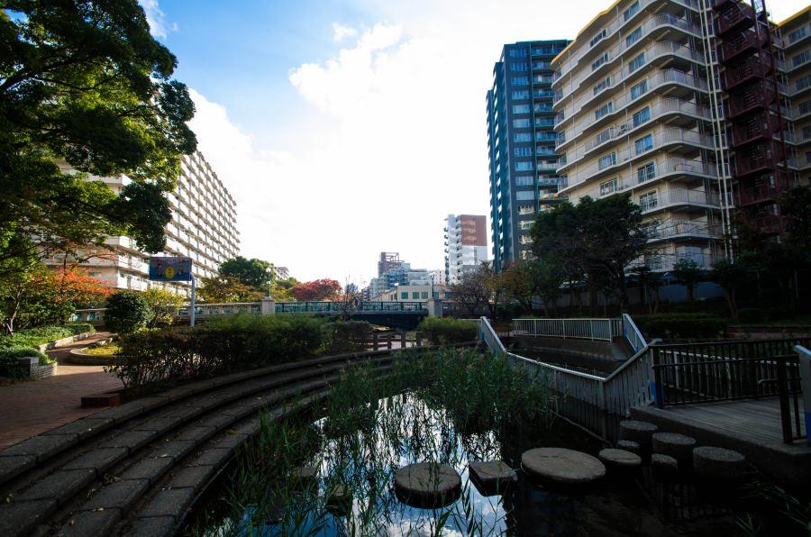 f:id:fukagawa1953:20171113103338j:plain