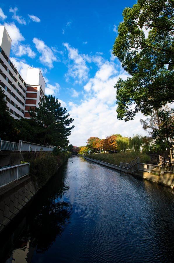 f:id:fukagawa1953:20171117081300j:plain