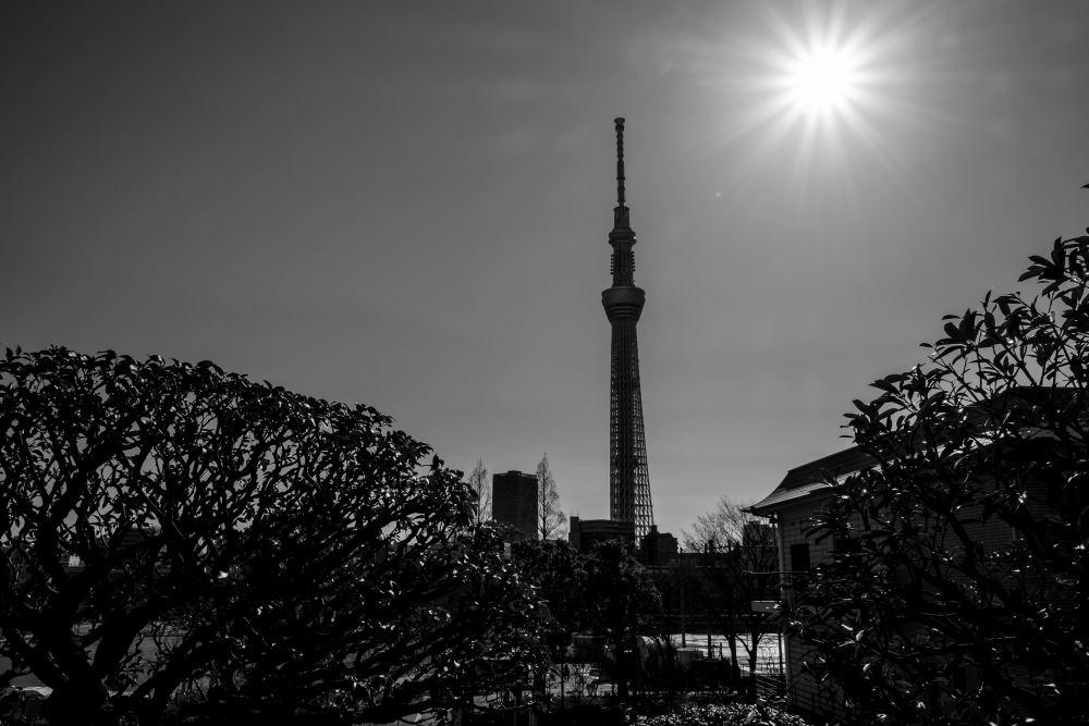 f:id:fukagawa1953:20180127193419j:plain