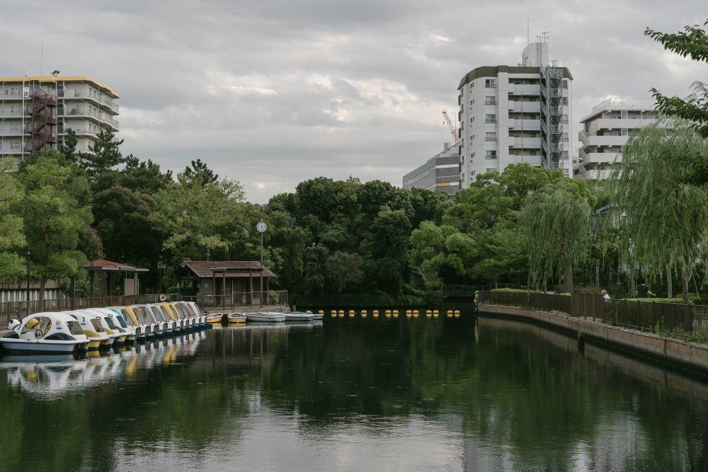 f:id:fukagawa1953:20180813063451j:plain
