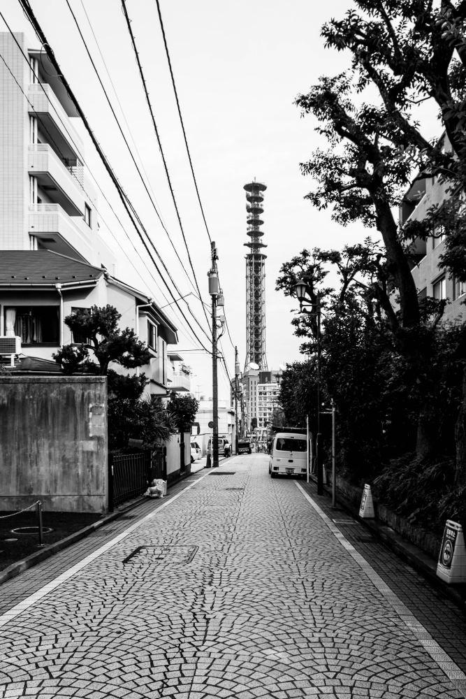 f:id:fukagawa1953:20181017071654j:plain