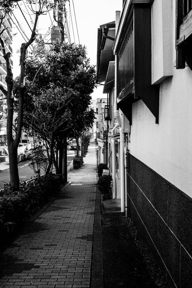 f:id:fukagawa1953:20181103104649j:plain