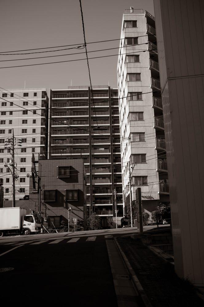 f:id:fukagawa1953:20181124184734j:plain